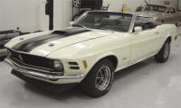 1970Stang's Photo