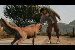 trailer 6 paw pound it