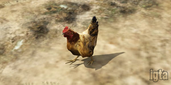 GTA 5 Chickens