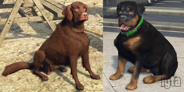 GTA 5 Dogs Old-Gen